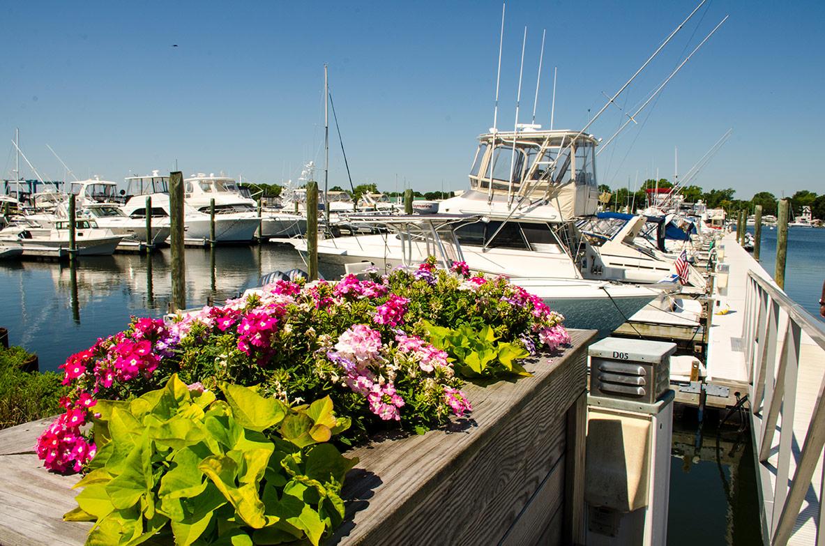 Marina-Dock